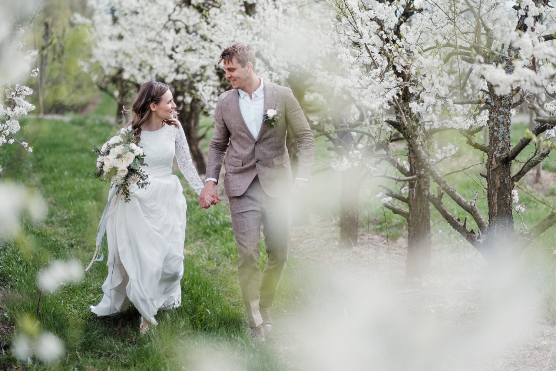 Brudepar plommeblomstringen blomster fruktgård mai 2019